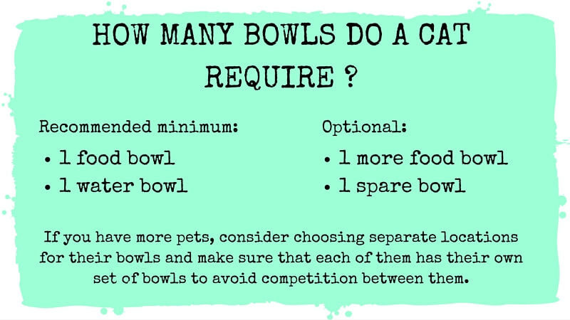How many bowls do a cat require?