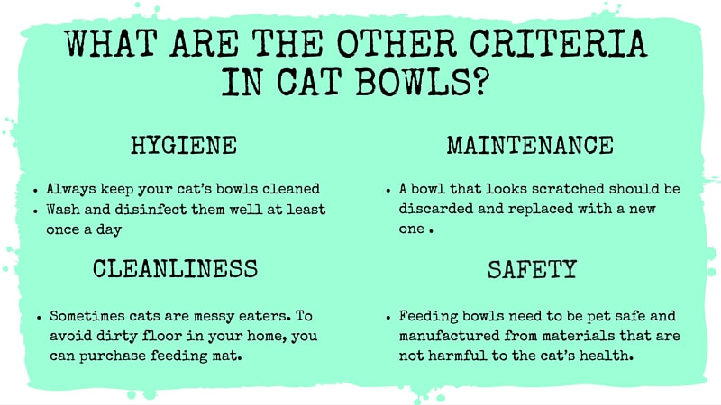 What are the other criteria in cat bowls?