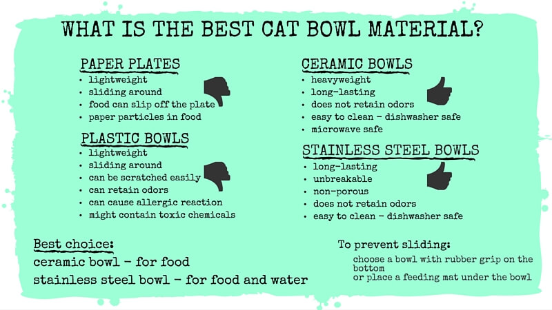 What is the best cat bowl material?