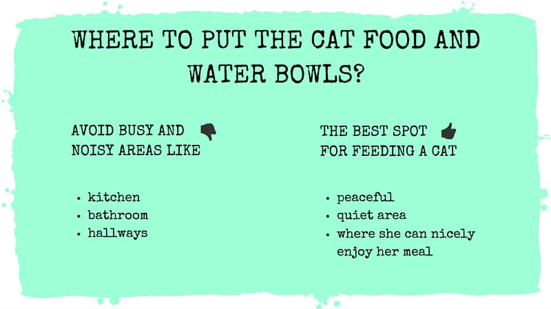 Where to put the cat food and water bowls?
